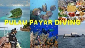 Pulau Payar Diving